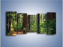 Obraz na płótnie – Chodźmy do lasu – pięcioczęściowy KN611W2