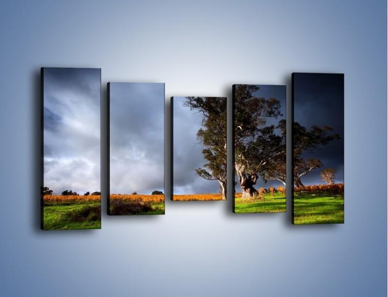 Obraz na płótnie – Burzowe chmury nad polaną – pięcioczęściowy KN748W2