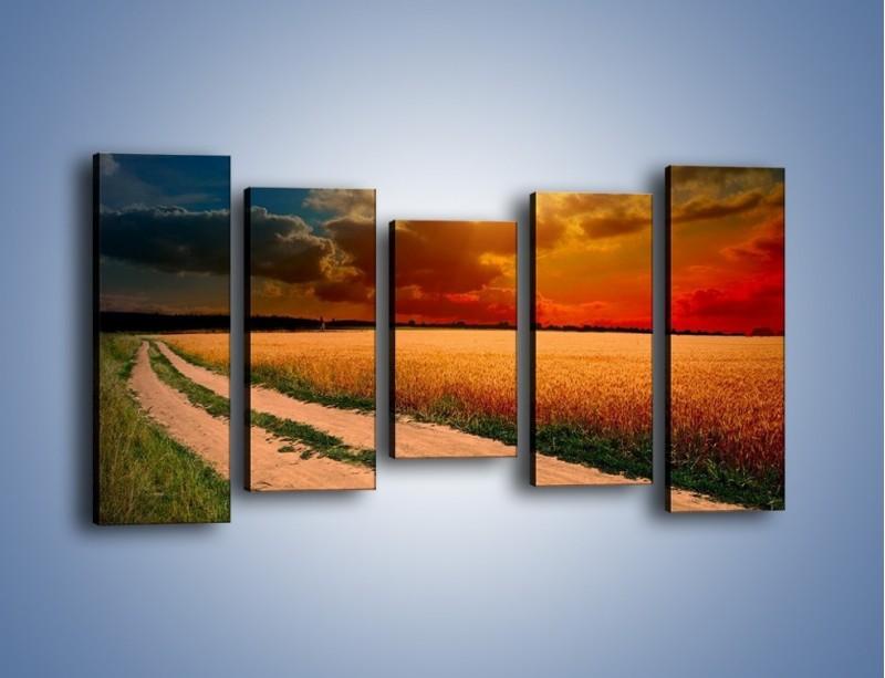 Obraz na płótnie – Zbożowa polana i jej cały urok – pięcioczęściowy KN776W2