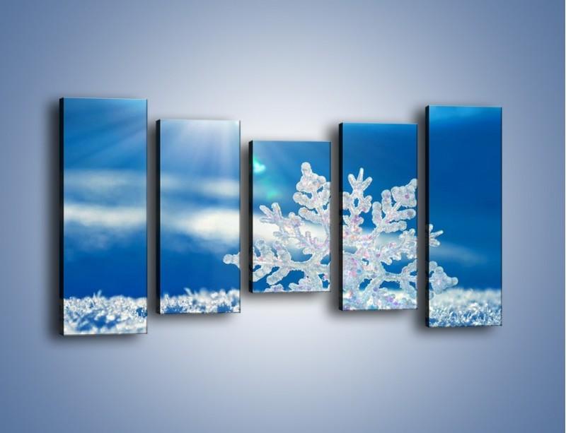 Obraz na płótnie – Diamentowa śnieżynka – pięcioczęściowy KN808W2