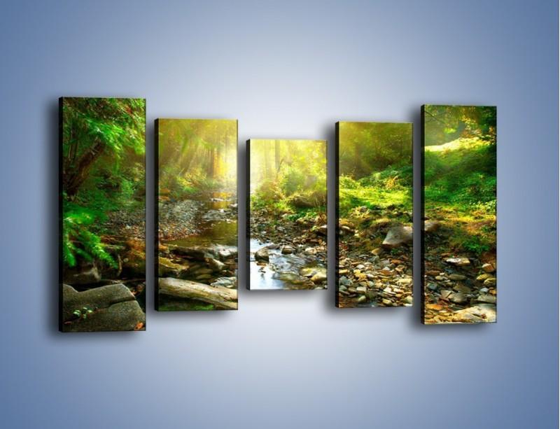 Obraz na płótnie – Kamiennym urwiskiem wśród potoku – pięcioczęściowy KN827W2