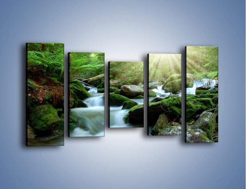 Obraz na płótnie – Silny potok w środku lasu – pięcioczęściowy KN861W2