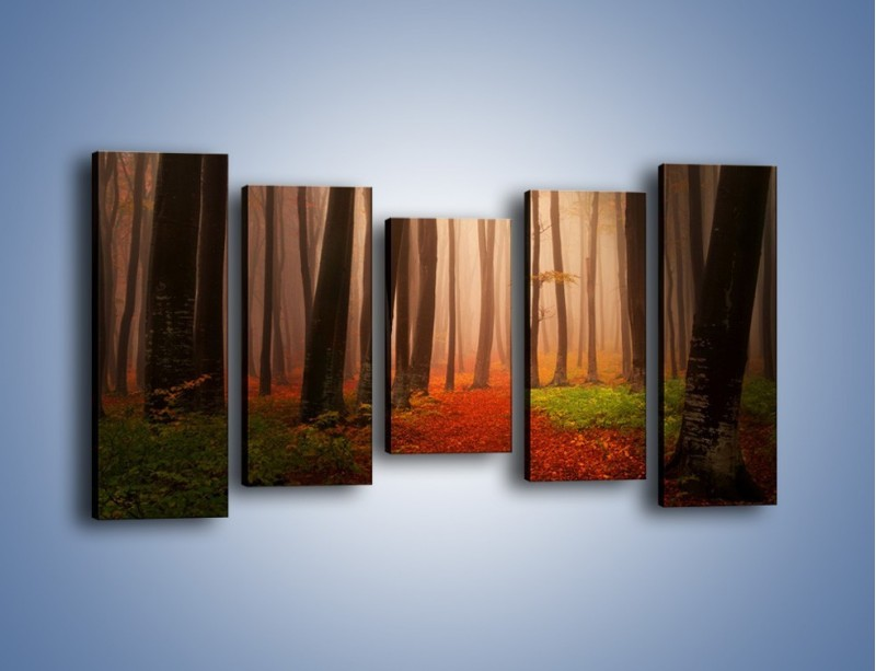 Obraz na płótnie – Las pełen tajemnic – pięcioczęściowy KN909W2