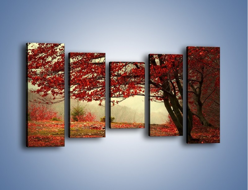 Obraz na płótnie – Spadające liście z drzew – pięcioczęściowy KN910W2