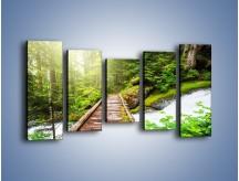 Obraz na płótnie – Bezpieczna droga przez las – pięcioczęściowy KN922W2