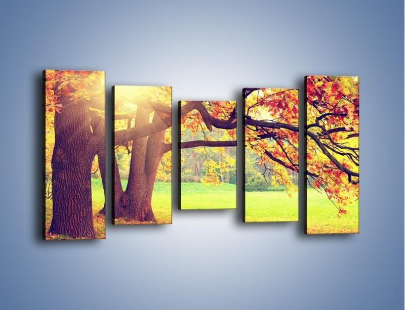 Obraz na płótnie – Jesienią w parku też jest pięknie – pięcioczęściowy KN967W2