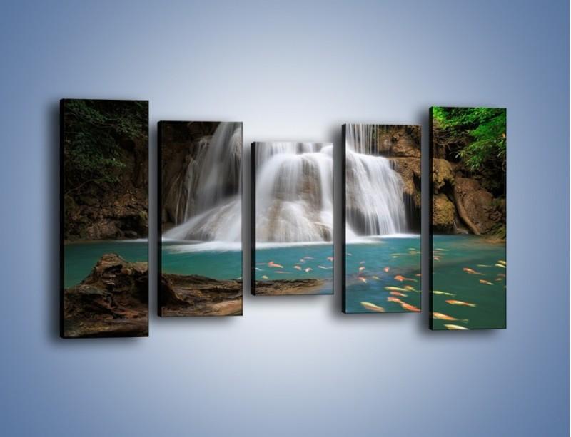 Obraz na płótnie – Wodospad i kolorowe rybki – pięcioczęściowy KN994W2