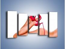 Obraz na płótnie – Bardzo kobiece dodatki – pięcioczęściowy L162W2