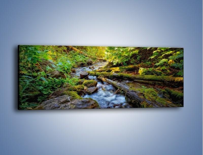 Obraz na płótnie – Drewno ścięte do wody – jednoczęściowy panoramiczny KN1059