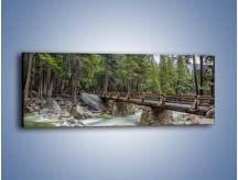 Obraz na płótnie – Bezpieczne przejście na druga stronę – jednoczęściowy panoramiczny KN1060