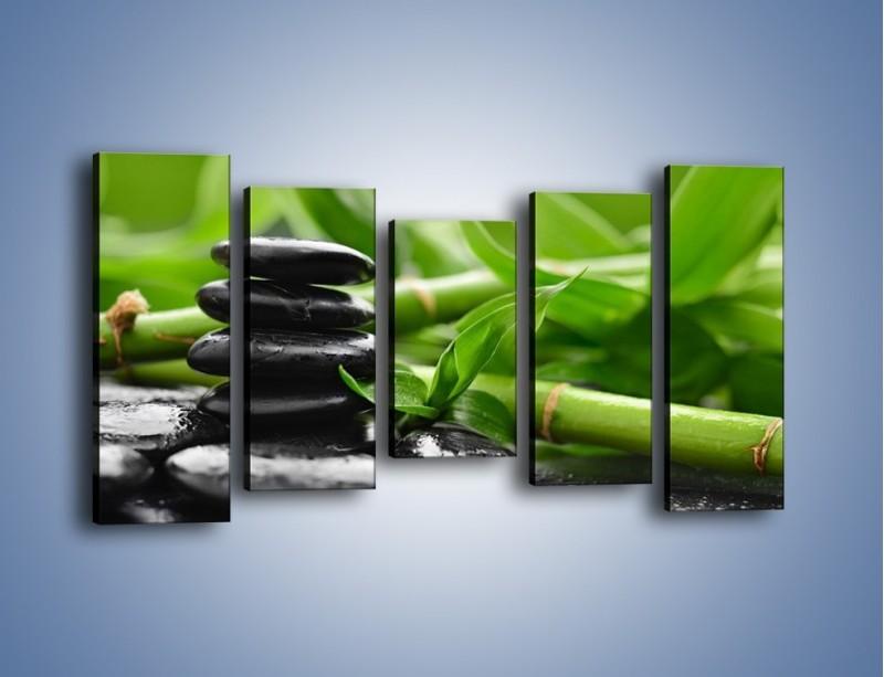 Obraz na płótnie – Czarne kamienie wśród bambusów – pięcioczęściowy O137W2