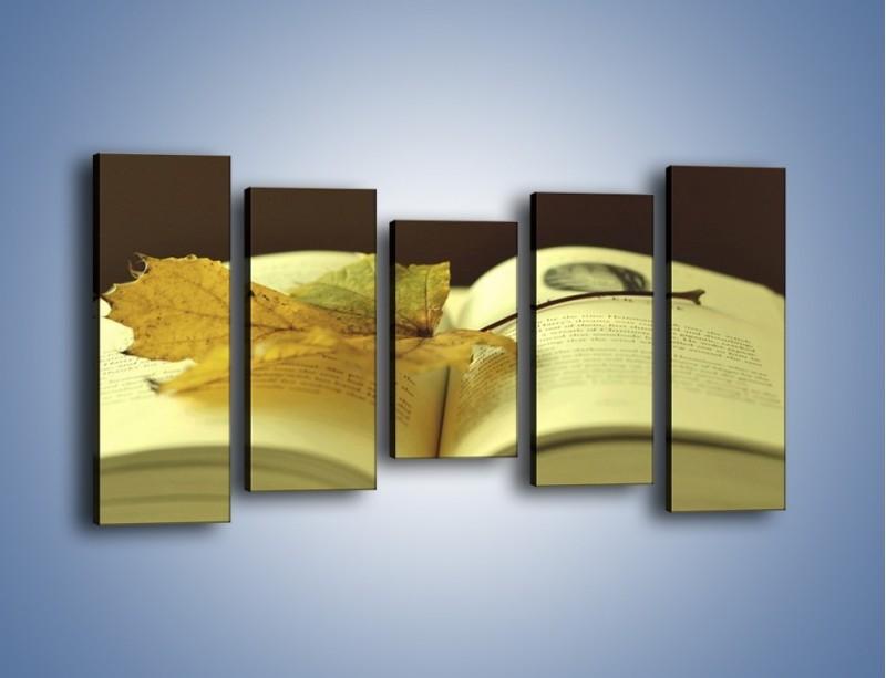 Obraz na płótnie – Liść na ciekawej powieści – pięcioczęściowy O163W2