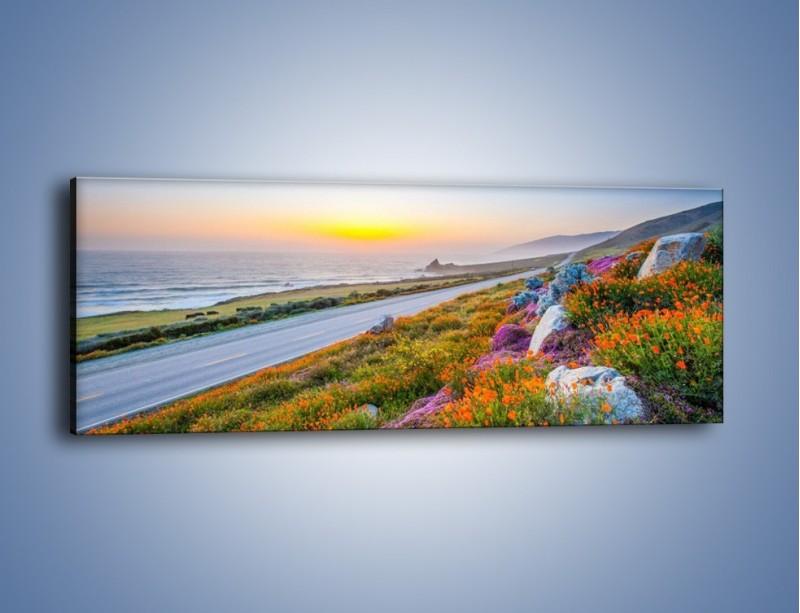 Obraz na płótnie – Kolory wiosny w kwiatach – jednoczęściowy panoramiczny KN1062