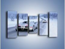 Obraz na płótnie – Bugatti Veyron w śniegu – pięcioczęściowy TM134W2