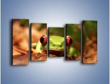 Obraz na płótnie – Bystre oczka małej żabki – pięcioczęściowy Z023W2