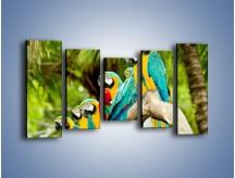 Obraz na płótnie – Kolorowe papugi w szeregu – pięcioczęściowy Z029W2
