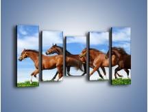 Obraz na płótnie – Galopujące stado brązowych koni – pięcioczęściowy Z172W2