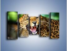 Obraz na płótnie – Jaguar z pazurem – pięcioczęściowy Z184W2