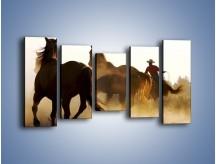 Obraz na płótnie – Cowboy wśród koni – pięcioczęściowy Z206W2