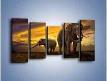 Obraz na płótnie – Ciekawość małego słonika – pięcioczęściowy Z212W2