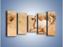 Obraz na płótnie – Klacz w tumanach piasku – pięcioczęściowy Z233W2