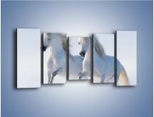 Obraz na płótnie – Gonitwa konna w bieli – pięcioczęściowy Z240W2