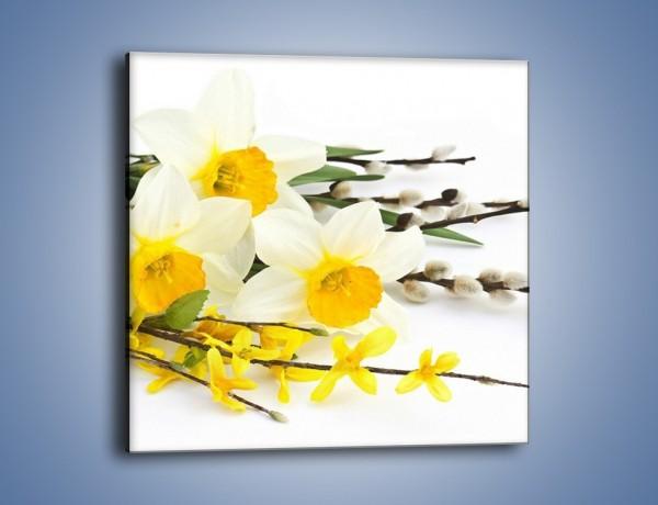 Obraz na płótnie – Wielkanocne bazie i żonkile – jednoczęściowy kwadratowy K002