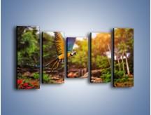 Obraz na płótnie – Kolorowa papuga w locie – pięcioczęściowy Z280W2