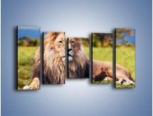 Obraz na płótnie – Dostojny lew na sawannie – pięcioczęściowy Z282W2