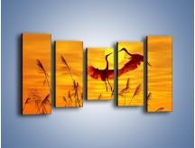 Obraz na płótnie – Czaple i zachód słońca – pięcioczęściowy Z302W2