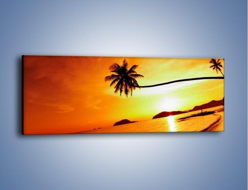 Obraz na płótnie – Palma o zachodzie słońca – jednoczęściowy panoramiczny KN1077