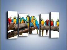 Obraz na płótnie – Kolorowe stado papug – pięcioczęściowy Z326W2
