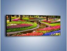Obraz na płótnie – Aleje kolorowych tulipanów – jednoczęściowy panoramiczny KN1079