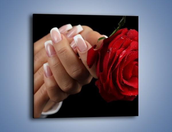 Obraz na płótnie – Kwiat róży w kobiecych dłoniach – jednoczęściowy kwadratowy K006