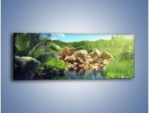 Obraz na płótnie – Bogata roślinność nad wodą – jednoczęściowy panoramiczny KN1082A