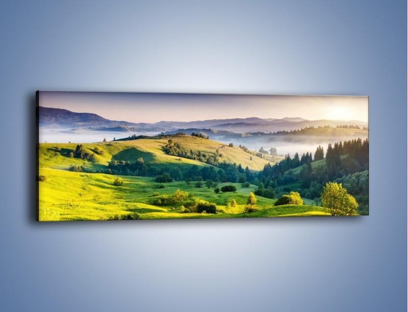 Obraz na płótnie – Tylko zieleń i góry – jednoczęściowy panoramiczny KN1084