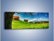 Obraz na płótnie – Chatki na polanie – jednoczęściowy panoramiczny KN1085A
