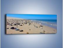 Obraz na płótnie – Całe morze kamyczków – jednoczęściowy panoramiczny KN1086A