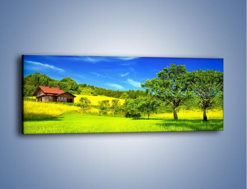 Obraz na płótnie – Domek na słonecznej łące – jednoczęściowy panoramiczny KN1090A