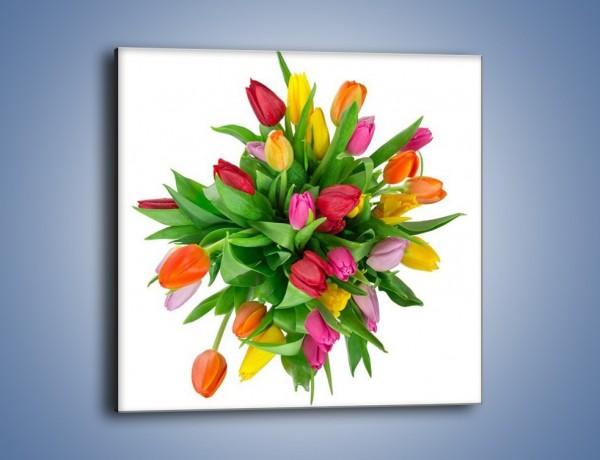 Obraz na płótnie – Wiązanka kolorowych tulipanów – jednoczęściowy kwadratowy K019