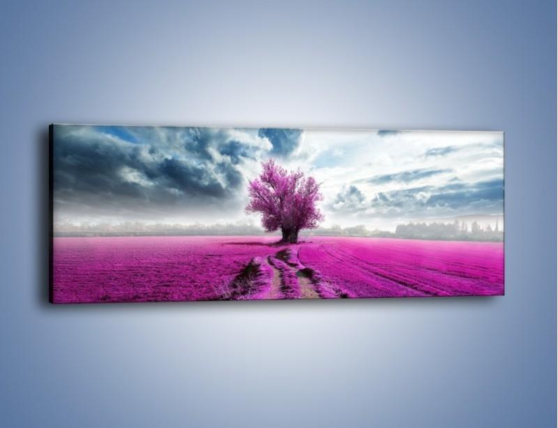 Obraz na płótnie – Lawendowe drzewo – jednoczęściowy panoramiczny KN1093