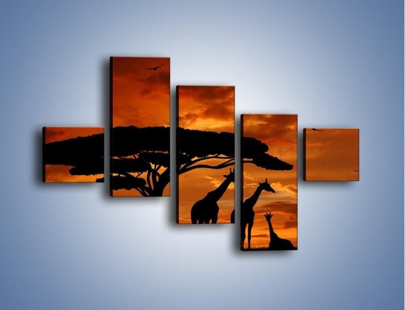 Obraz na płótnie – Żyrafy wieczorową porą – pięcioczęściowy GR266W3