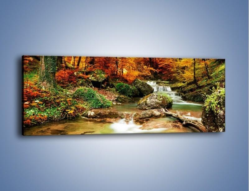 Obraz na płótnie – Jesienne kolory w lesie – jednoczęściowy panoramiczny KN1094A