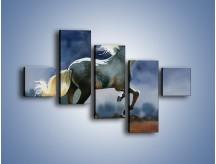 Obraz na płótnie – Bieg z koniem przez noc – pięcioczęściowy GR339W3