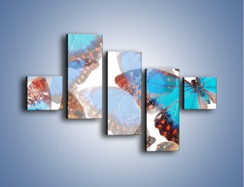 Obraz na płótnie – Motyl w niebieskim kolorze – pięcioczęściowy GR403W3