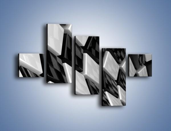 Obraz na płótnie – Czarne czy białe – pięcioczęściowy GR425W3