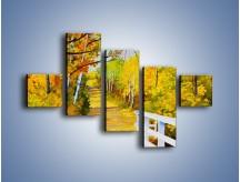 Obraz na płótnie – Alejką w słoneczna jesień – pięcioczęściowy GR540W3