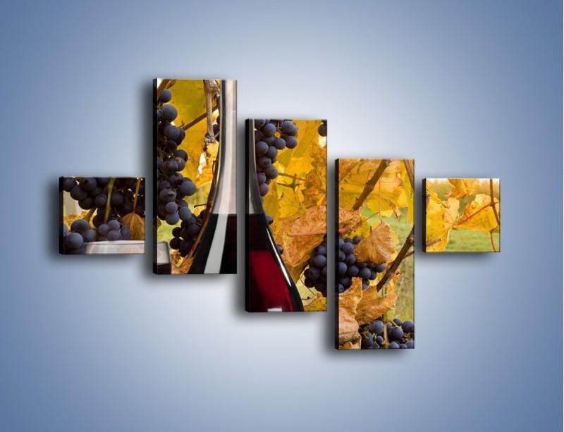 Obraz na płótnie – Wino wśród winogron – pięcioczęściowy JN007W3