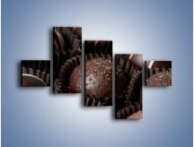 Obraz na płótnie – Czekoladowe praliny w foremkach – pięcioczęściowy JN040W3