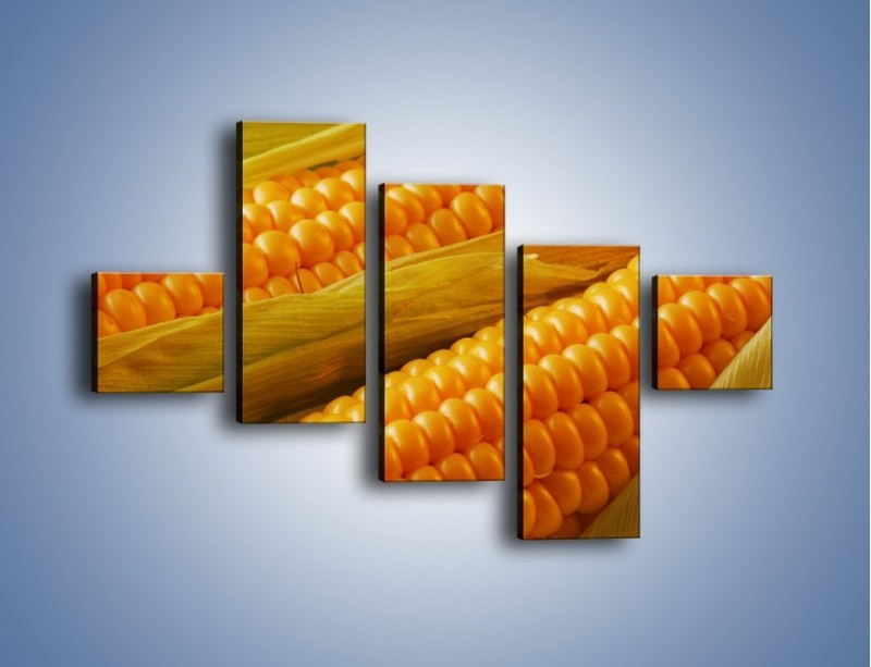 Obraz na płótnie – Kolby dojrzałych kukurydz – pięcioczęściowy JN046W3